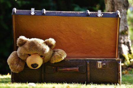 トランクの中にクマのぬいぐるみ
